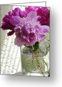 Pink Peonies Greeting Cards - Snickerhaus Peonies in a Vase No.2 Greeting Card by Christine Belt