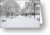 Blizzard Greeting Cards - Snow Covered Benches And Trees In Washington Park Greeting Card by Shobeir Ansari