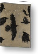Black Wings Greeting Cards - Snow Crows Greeting Card by Sophy White