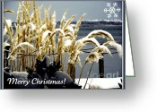 Happy New Year Greeting Cards - Snow Dust Christmas Card Greeting Card by Karen Wiles