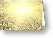 Solar Eclipse Greeting Cards - Snow Geese and Sun Greeting Card by Patrick Ziegler