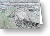 Goose Drawings Greeting Cards - Snow Goose in Flight using Quill Pens and Ink with Watercolor Washes. Greeting Card by John Fowler