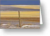 Prairie Landscape Greeting Cards - Snow hills Saskatchewan Greeting Card by Mark Duffy