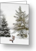 Snowy Night Greeting Cards - Snow In The Park Greeting Card by Liviu Leahu