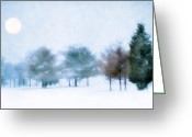 Bare Trees Greeting Cards - Snow Moon Greeting Card by Darren Fisher