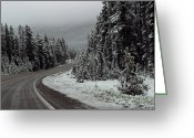 Yellow Line Greeting Cards - Snow on Road Through Forest Greeting Card by Linda Phelps