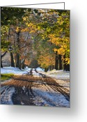 Winter Road Greeting Cards - Snow Out of Season Greeting Card by Bill Cannon