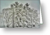 Winter Storm Digital Art Greeting Cards - Snow Trees  HDR Greeting Card by Thomas  MacPherson Jr