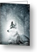 Winter Trees Mixed Media Greeting Cards - Snow Wolf Greeting Card by Svetlana Sewell