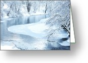 White River Scene Greeting Cards - Snowfall on Gauley Greeting Card by Thomas R Fletcher