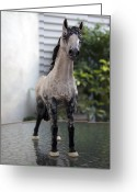 Horse Sculpture Greeting Cards - Snowflake 2 Greeting Card by Yelena Rubin