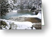 Virginia Winter Greeting Cards - Snowing on the Back Fork of Elk River Greeting Card by Thomas R Fletcher