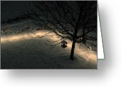 Tamara Stoneburner Greeting Cards - Snowlights Greeting Card by Tamara Stoneburner