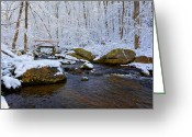 Kent Connecticut Greeting Cards - Snowy Forest Greeting Card by Bill  Wakeley