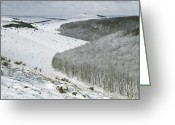 Snow On Field Greeting Cards - Snowy Landscape, Dorset Greeting Card by Adrian Bicker