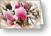Magnolia Mixed Media Greeting Cards - Snowy Magnoila Mist  Greeting Card by Andee Photography