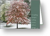 Zen Quotes Greeting Cards - Snowy Maple with Buddha Quote Greeting Card by Heidi Hermes