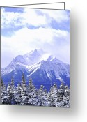 Icy Greeting Cards - Snowy mountain Greeting Card by Elena Elisseeva