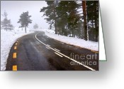 Snow Storm Greeting Cards - Snowy road Greeting Card by Carlos Caetano