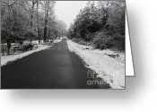 Storm Prints Photo Greeting Cards - Snowy Street After a Winter Storm Greeting Card by Cindy Hudson