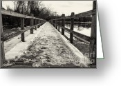 Lake Park Greeting Cards - Snowy walk Greeting Card by Miguel Celis