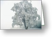 Frost Greeting Cards - Snowy Winter Landscape Greeting Card by John Foxx