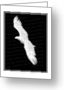 Isaiah Greeting Cards - Soaring - Isaiah Forty Greeting Card by Cliff Hawley