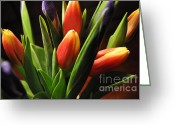 Easter Greeting Cards - Soft Fireworks Greeting Card by Luke Moore