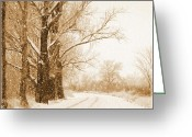 Winter Trees Greeting Cards - Soft Sepia Seasons Greetings Greeting Card by Carol Groenen