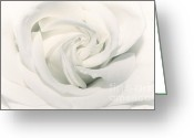 Florals Greeting Cards - Soft white Greeting Card by Kristin Kreet