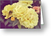 Cream Roses Greeting Cards - Soft Yellow Greeting Card by Cathie Tyler