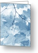 Blue Leaves Greeting Cards - Softness of Blue Leaves Greeting Card by Jennie Marie Schell