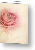 Flowery Greeting Cards - Sogno Romantico Greeting Card by Priska Wettstein