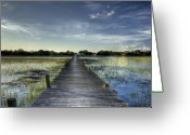 Folly Beach Lighthouse Greeting Cards - Sol Legare Dock Charleston SC Greeting Card by Dustin K Ryan