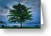 Misty Prints Prints Greeting Cards - Solitary Tree Greeting Card by Steven Ainsworth
