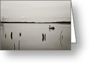 Terry Deluco Greeting Cards - Solitude Greeting Card by Terry DeLuco