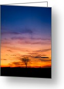 Solstice Greeting Cards - Solstice Sunrise Greeting Card by Bill  Wakeley