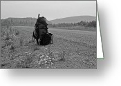 Dawson City Greeting Cards - Somewhere in Nowhere ... Greeting Card by Juergen Weiss