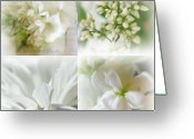 Beautiful Flowers Greeting Cards - Somewhere In Time Greeting Card by Kathy Bucari