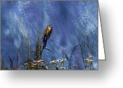 Reelfoot Lake Digital Art Greeting Cards - Song Of The Dickcissel Greeting Card by J Larry Walker