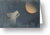 Nature And Wolves Greeting Cards - Song To The Moon Greeting Card by Debra     Vatalaro