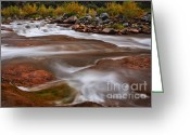 Fall Colors Greeting Cards - Soothing Waters of the Salt River 4 Greeting Card by Dave Dilli