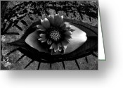 Lashes Greeting Cards - Soul Window Greeting Card by Chris Berry