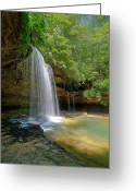 Mountain Laurel Greeting Cards - South Caney Creek Falls Greeting Card by Les Griffith