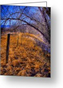 Flood Plain Greeting Cards - South Platte Fenceline Greeting Card by David Patterson