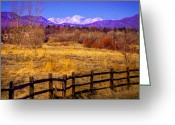 Flood Plain Greeting Cards - South Platte Park Fenceline  Greeting Card by David Patterson