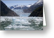 U.s. National Forest Greeting Cards - South Sawyer Glacier And Bay Full Greeting Card by Matthias Breiter