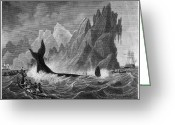 South Seas Greeting Cards - South Seas Whaling Greeting Card by Granger