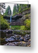 State Flowers Greeting Cards - South Silver Falls with Bridge Greeting Card by Darcy Michaelchuk