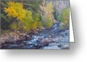 Colorado Greeting Cards Greeting Cards - South St Vrain Creek Autumn View Greeting Card by James Bo Insogna